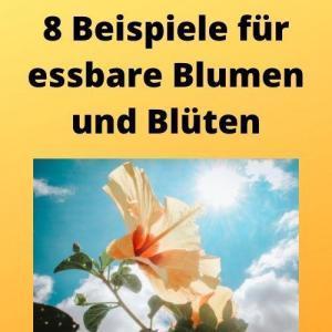 8 Beispiele für essbare Blumen und Blüten