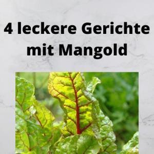 4 leckere Gerichte mit Mangold